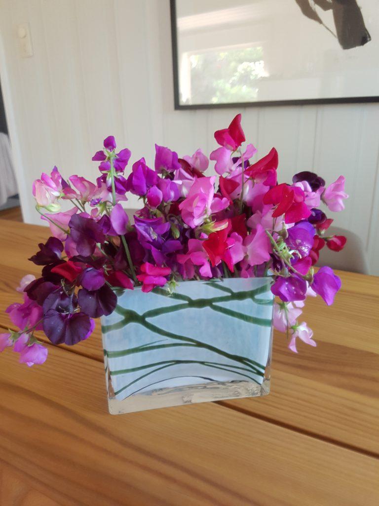 Jevnlig klipping av blomstene på Lukterten. Belønningen er å kunne plukke den største buketten av Luktert jeg noen gang har hatt!