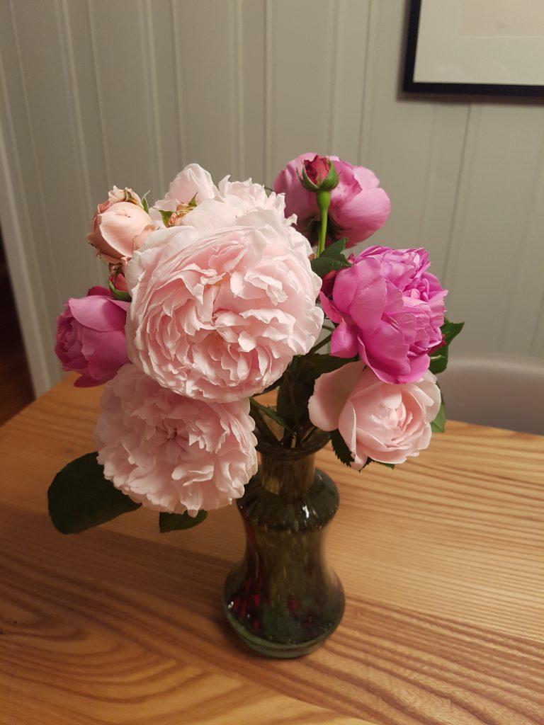 En herlig rosebukett plukket 12. oktober...