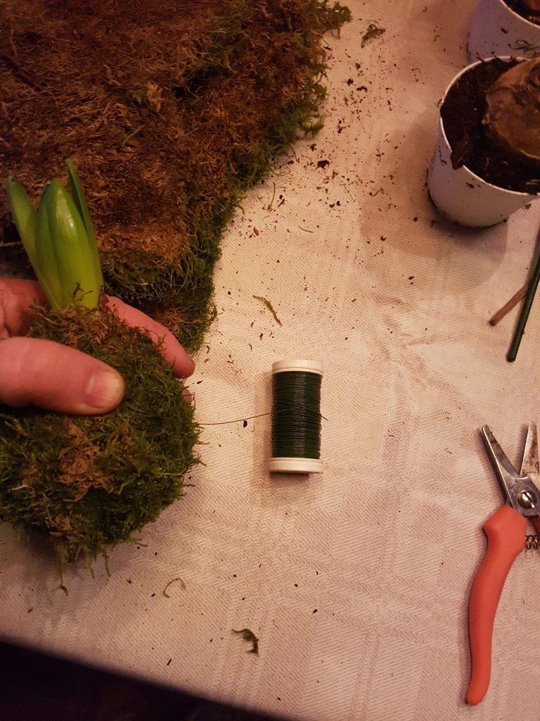 Til mosearbeid bruker jeg grønn myrtetråd. vikler rundt og strammer for å holde formen