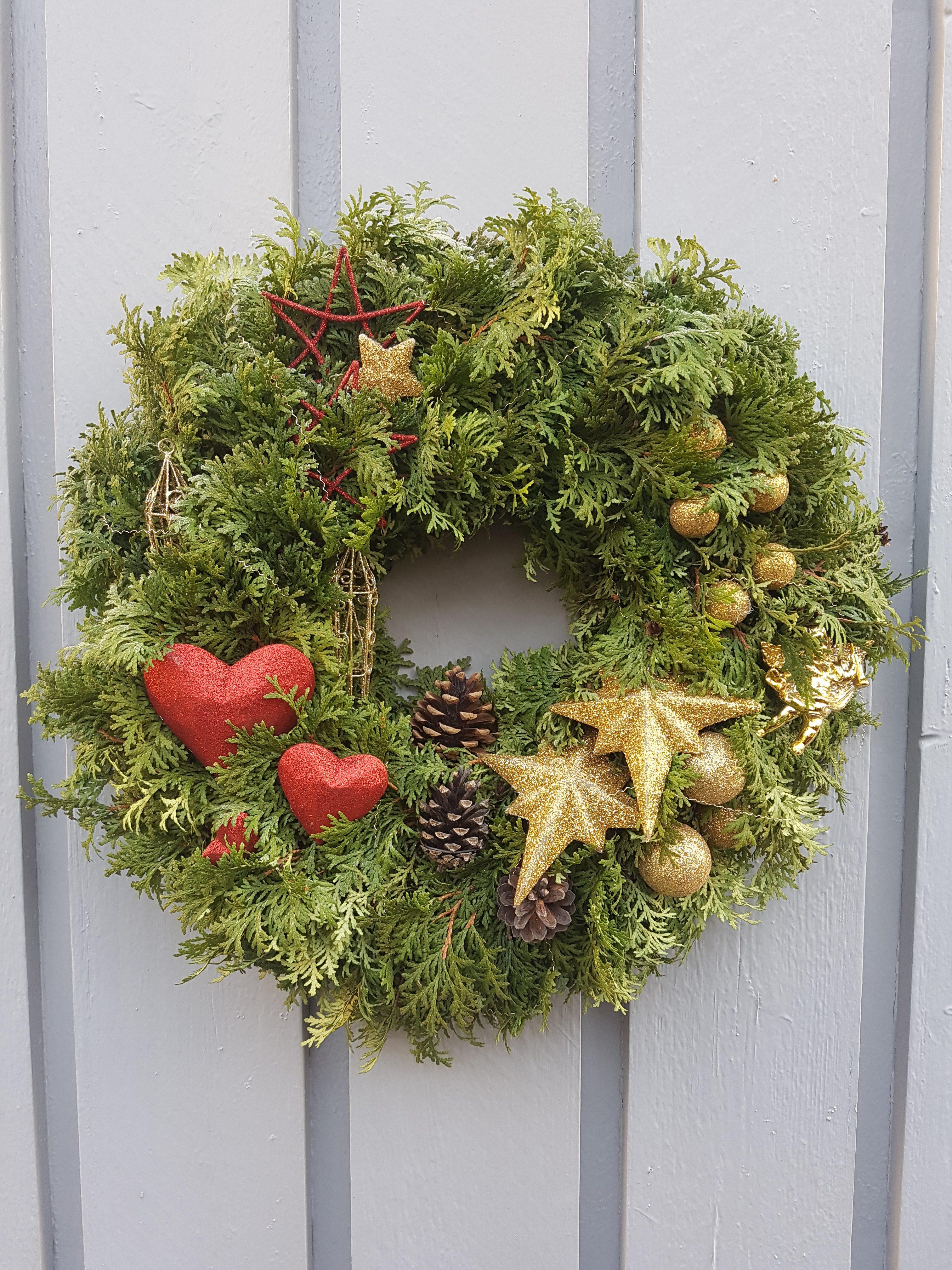 Tuja hekken i en rundkrans som pynt til jul