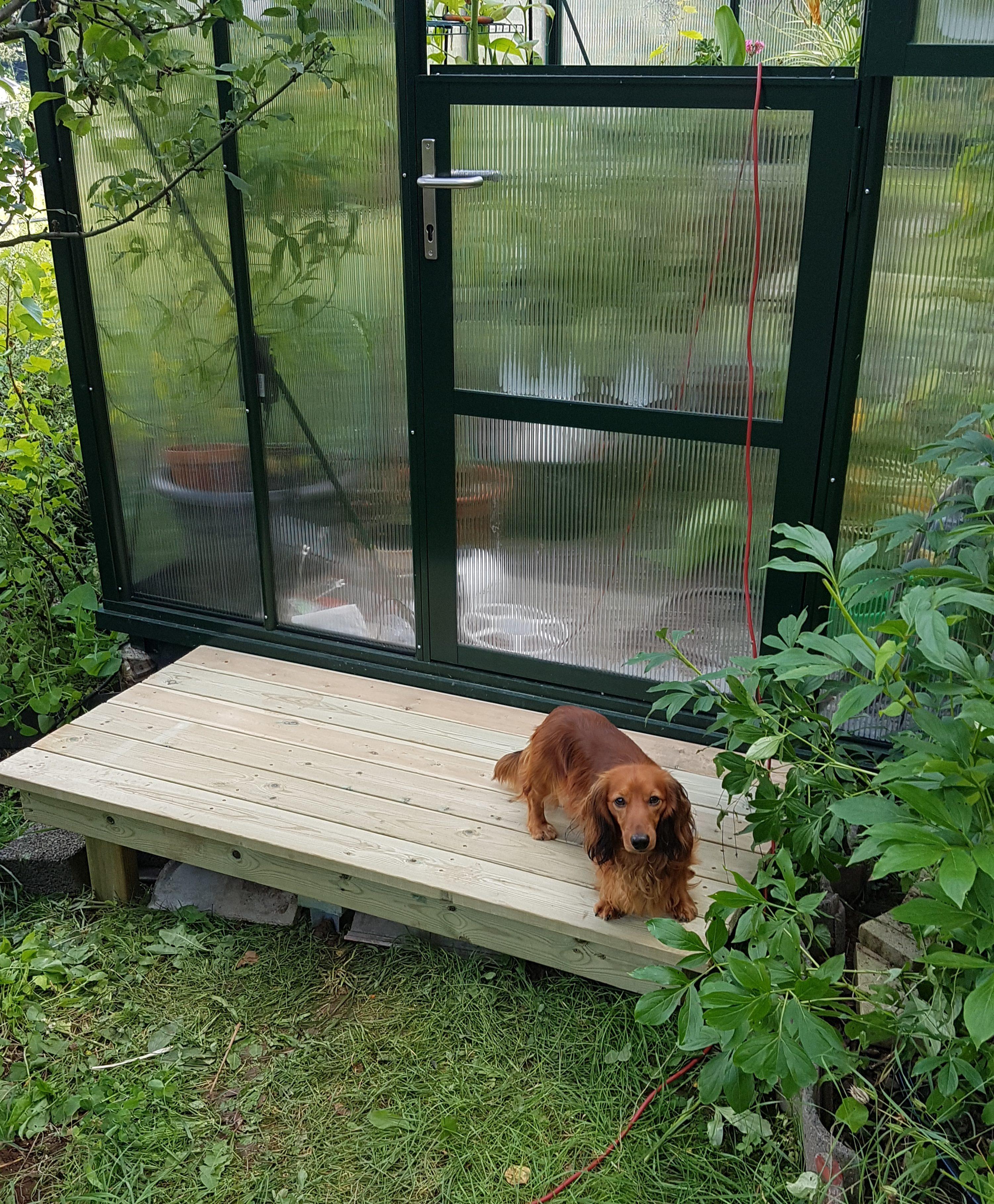 Da har drivhuset fått seg en ørliten terrasse eller trapp