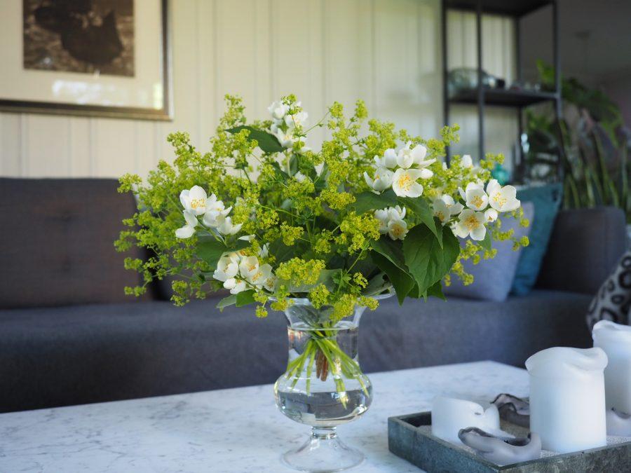 bukett med blomster i dagens favoritter