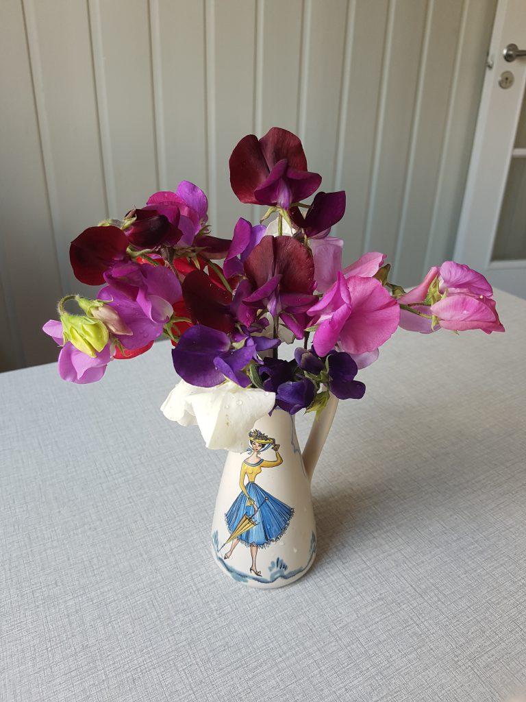 Årets første avling av Blomstererter i Mormors gamle vase. Det kan jo ikke bli bedre!
