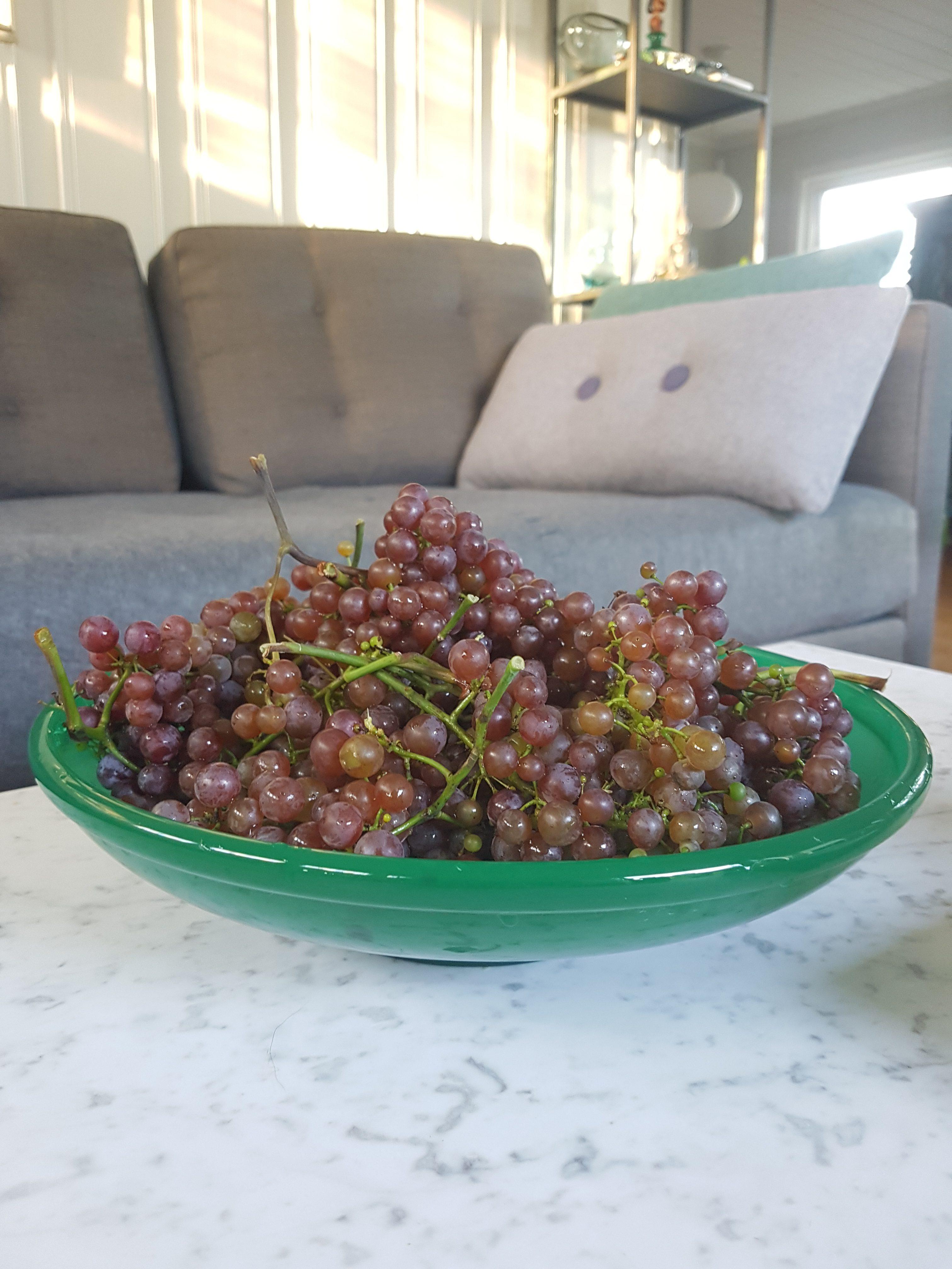 Et par forhåndsregler når du bruker frukt og grønnsaker til dekorasjon!