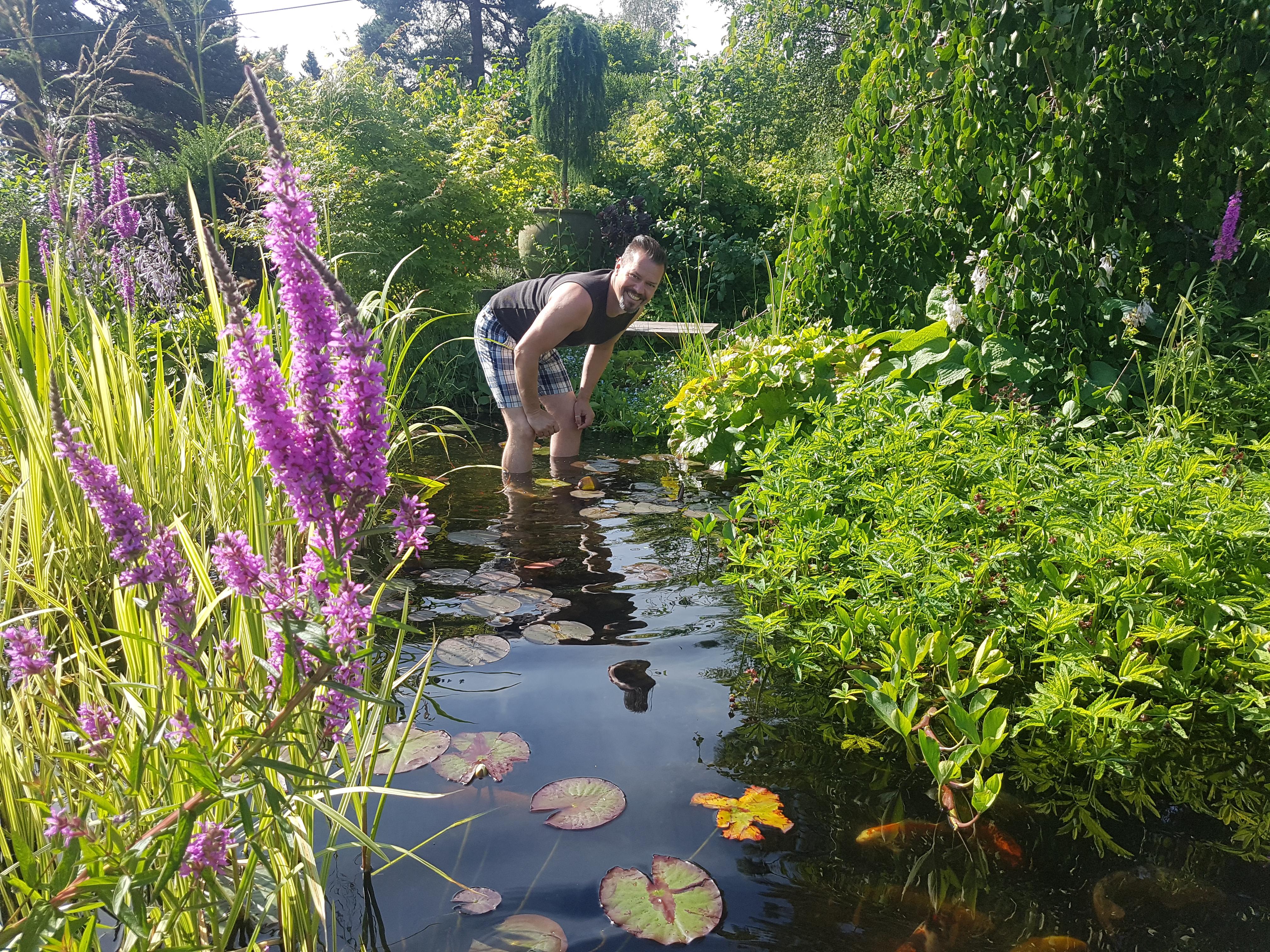 En av tingene jeg gjør for å få hagedam med klart vann