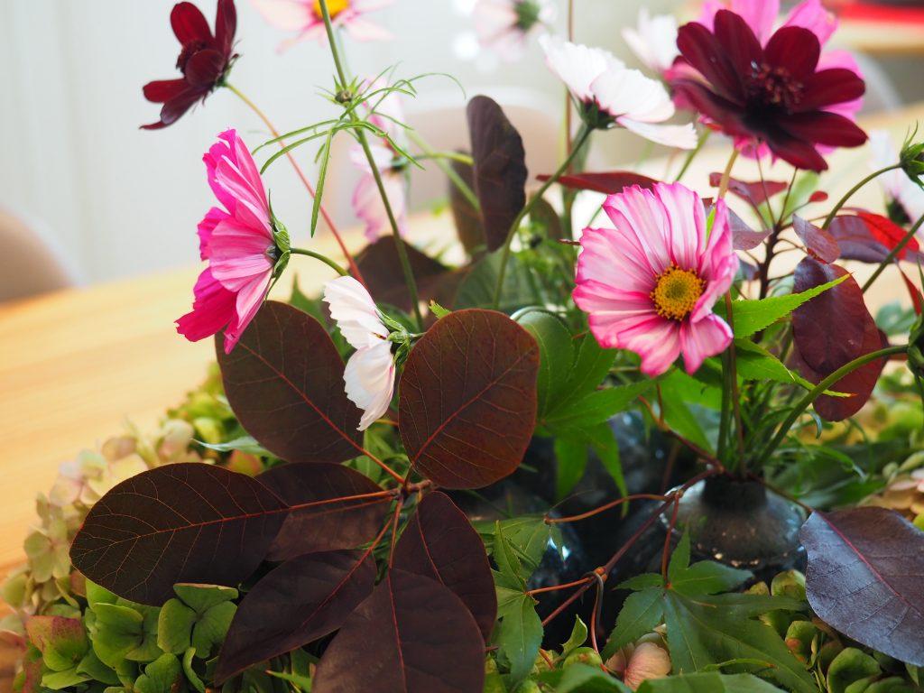 Dekorasjon hortensia