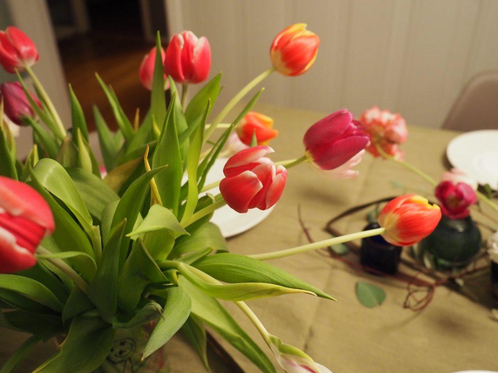 tulipaner som borddekorasjon