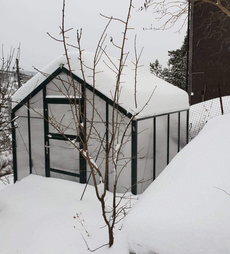 På tide å måke drivhustak for å spare konstruksjon og plater